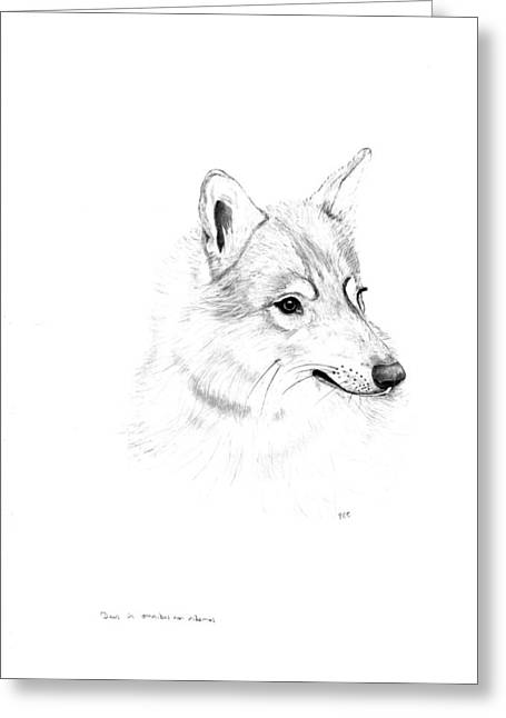 Portrait Of A Wolf Greeting Card by Peter Edward Green