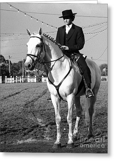 Portuguese Horse Rider Greeting Card by Gaspar Avila