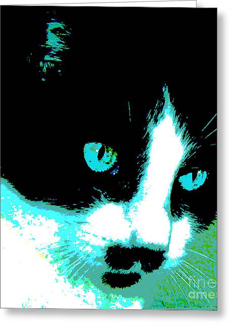 Poster Kitty Greeting Card by Elinor Mavor