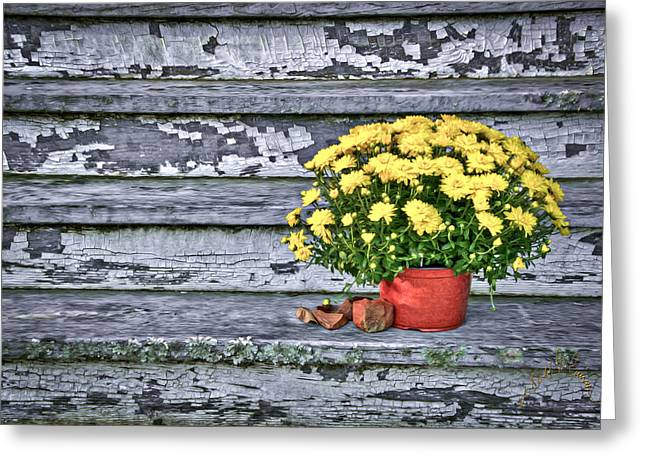 Pot Of Gold Greeting Card by Williams-Cairns Photography LLC