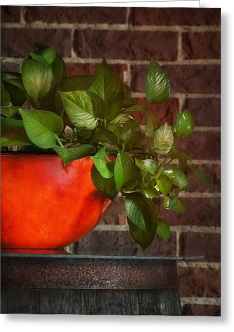 Pot Of Greens Greeting Card by Brenda Bryant