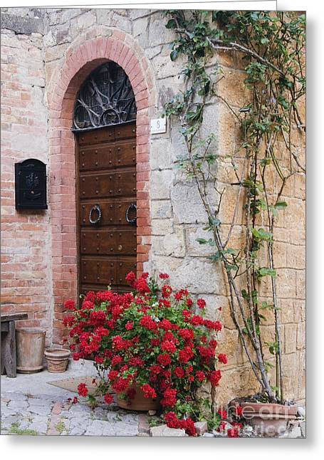 Potted Plant In Front Of Arched Doorway Greeting Card
