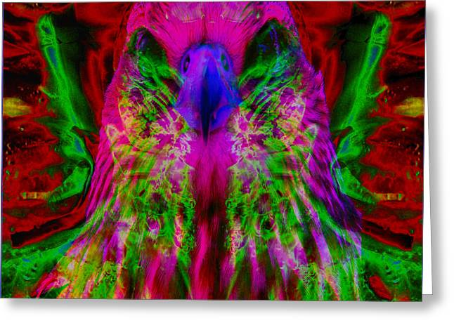 Power Hawk 2 Greeting Card by Colleen Cannon