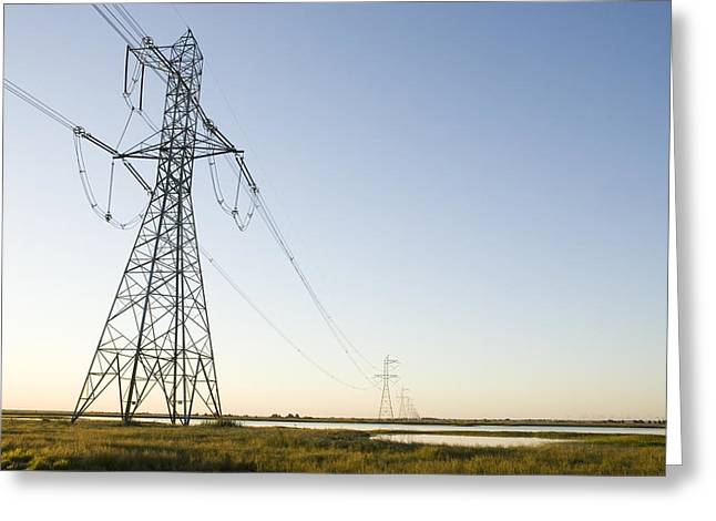 Powerlines Jepson Prairie Preserve Greeting Card by Sebastian Kennerknecht