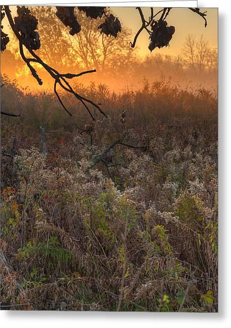 Prairie Sunrise Greeting Card by Steve Gadomski