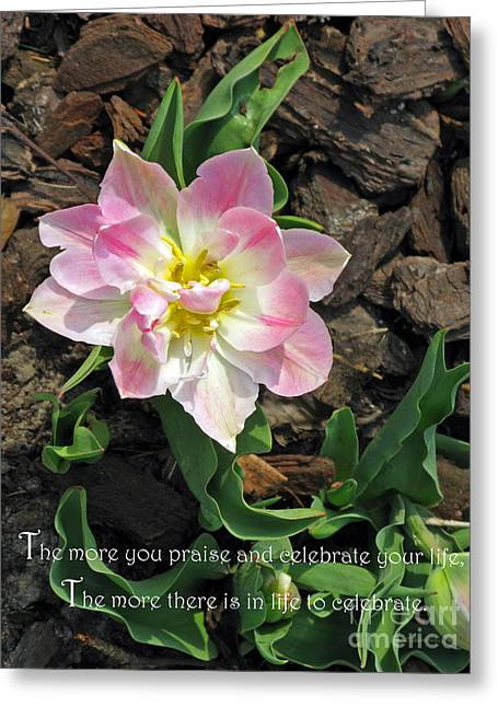 Praise And Celebrate Life Greeting Card by Ausra Huntington nee Paulauskaite