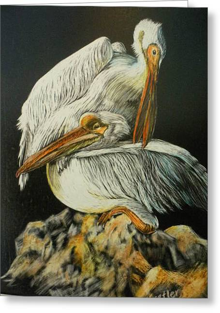 Preening Pelicans Greeting Card