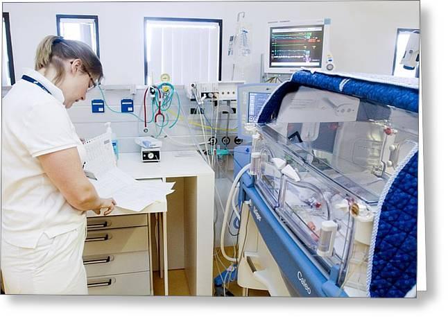Premature Baby Unit Greeting Card