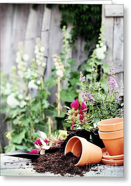 Preparing Flower Pots Greeting Card by Stephanie Frey