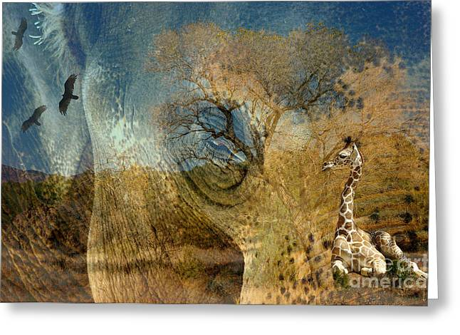 Greeting Card featuring the photograph Preservation by Vicki Pelham