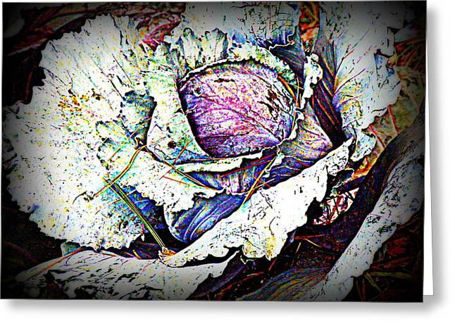 Pretty As A Flower Greeting Card by Selma Glunn