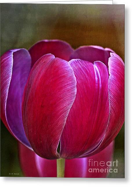 Pretty In Pink Greeting Card by Deborah Benoit