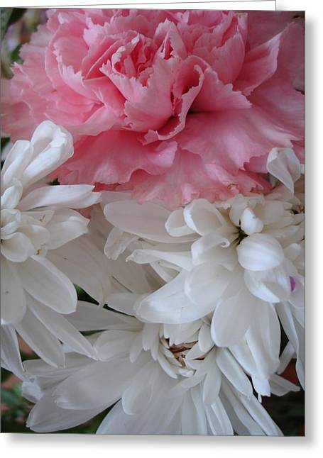 Pretty Pastel Petals Greeting Card by Yvonne Scott
