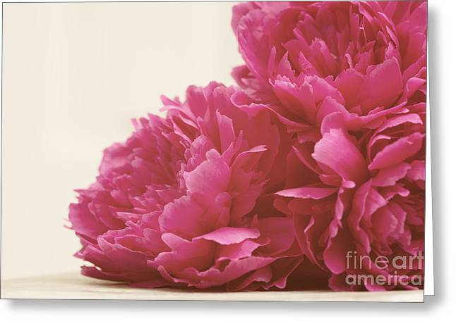 Pretty Pink Peonies Greeting Card by Kim Fearheiley