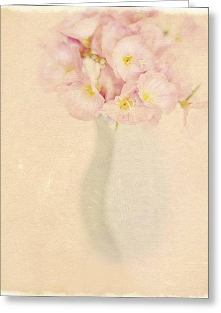 Pretty Primroses Greeting Card