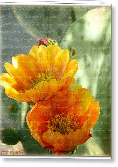 Prickly Pear Blooms Greeting Card