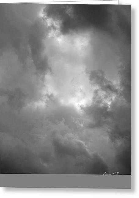 Primordial In Black And White Greeting Card by Suzanne Gaff