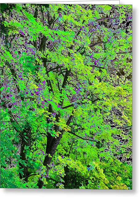 Pristine Country Green Greeting Card