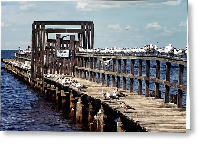 Private Pier Greeting Card