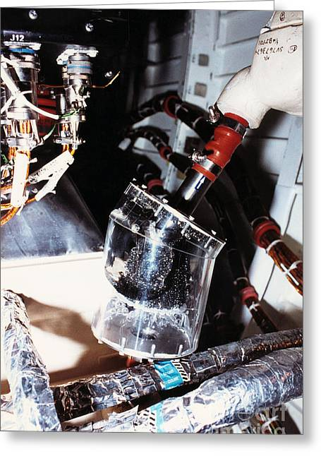 Prototype Airwater Filter On Test Greeting Card by NASA / Science Source