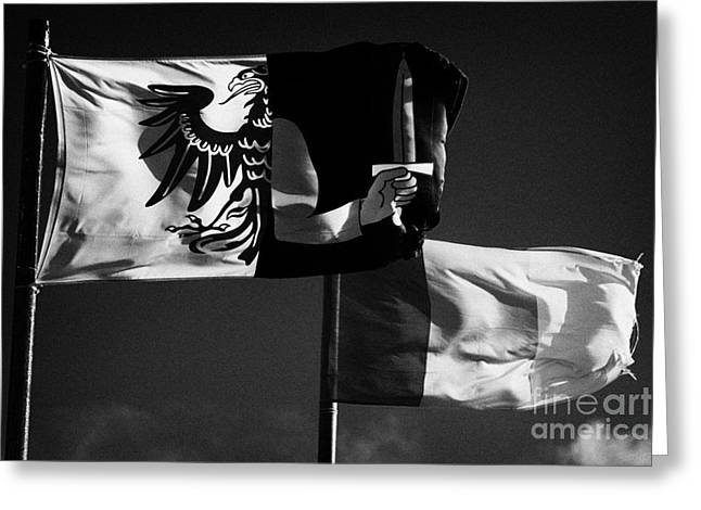 Provincial Connacht And Irish Tricolour Flags Flying In Republic Of Ireland Greeting Card by Joe Fox