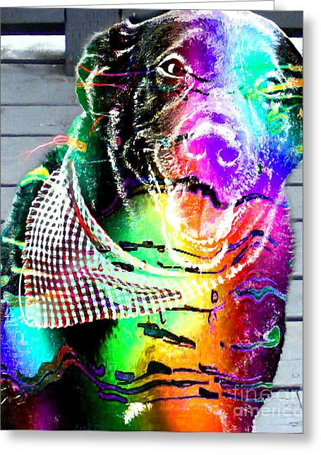 Psychedelic Black Lab With Kerchief Greeting Card by Barbara Griffin