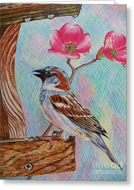 Ptg   Sparrow With Pink Dogwood In The Rain Greeting Card