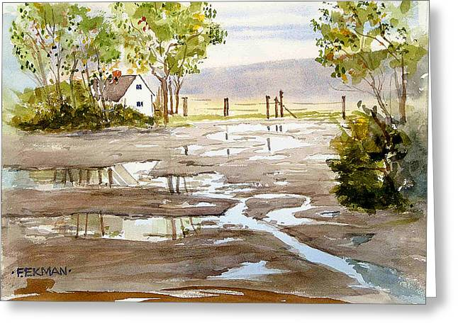 Puddles Greeting Card by Fred Ekman