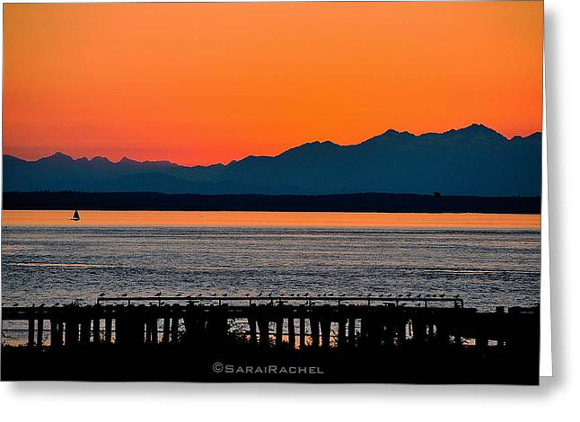 Puget Sound Sunset Greeting Card by Sarai Rachel
