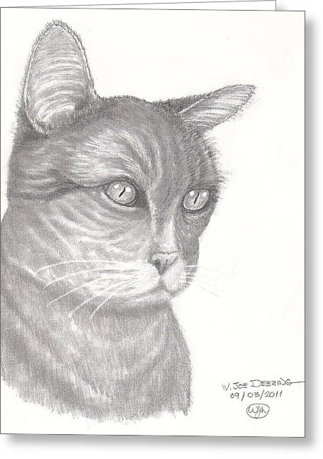 Pugnosed Cat Greeting Card by William Deering