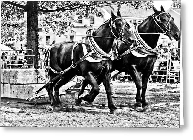 Pulling 9000 Pounds Greeting Card by Mike Martin