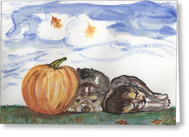 Pumpkin And Puppies Greeting Card by Pamela Wilson