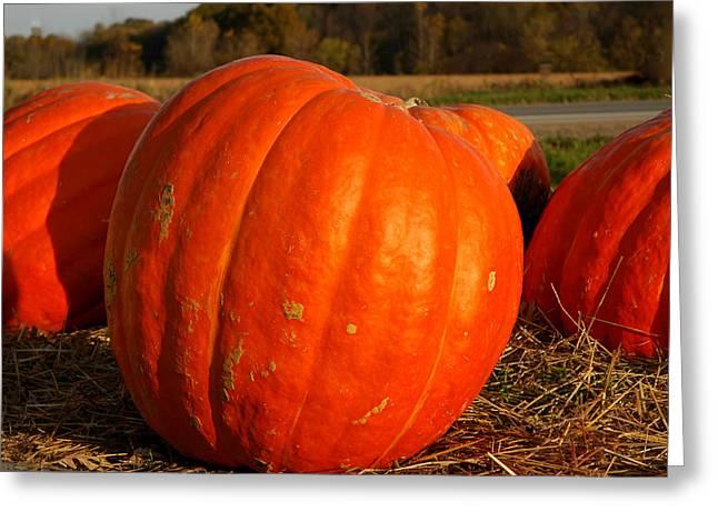 Pumpkin Hay Ride Greeting Card