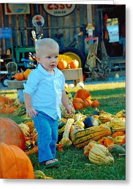 Pumpkin Greeting Card by Phil Burton