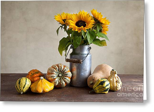 Pumpkins And Sunflowers Greeting Card