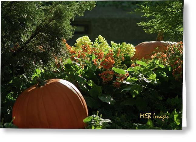 Pumpkins In Autumn Greeting Card