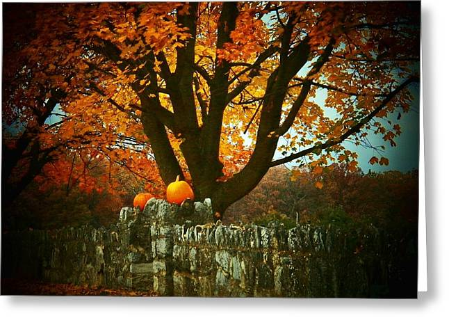 Pumpkins On The Wall Greeting Card by Joyce Kimble Smith