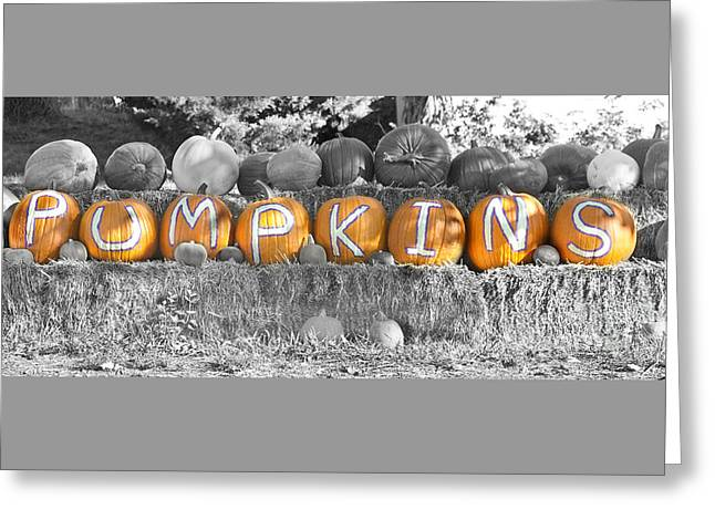 Pumpkins P U M P K I N S Bwsc Greeting Card by James BO  Insogna