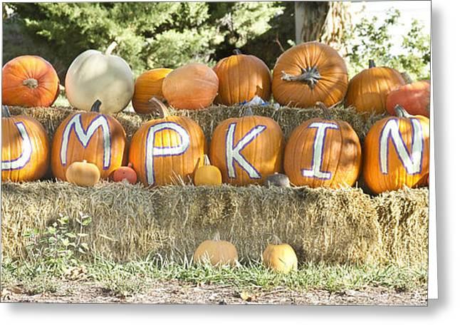 Pumpkins P U M P K I N S Greeting Card by James BO  Insogna