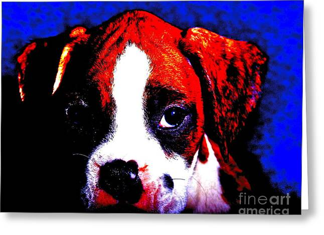 Pup1 Greeting Card by Xn Tyler