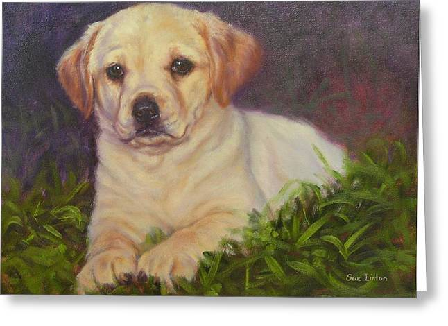 Puppy Love Greeting Card by Sue Linton
