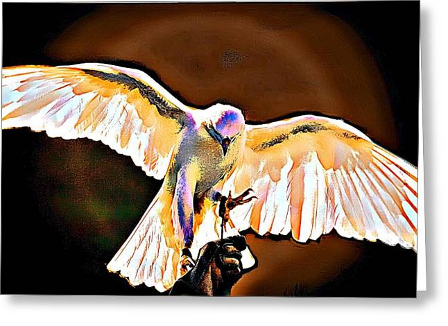 Pure Whtie Raptor Greeting Card by Carrie OBrien Sibley