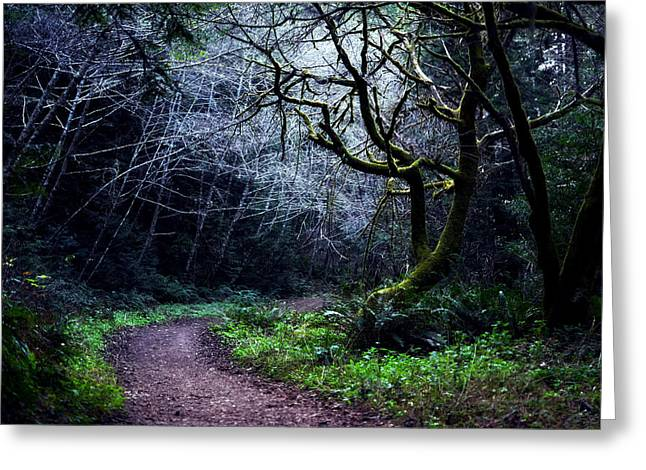 Purisima Creek Trail Greeting Card