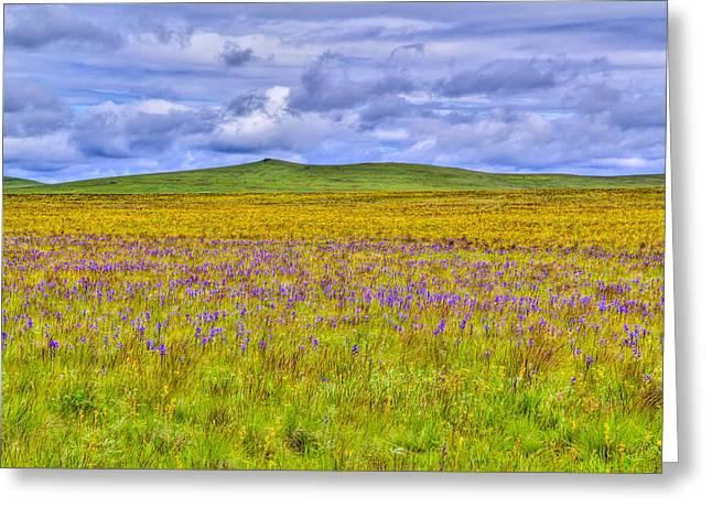 Purple Flowers On The Prairie Greeting Card by Jen TenBarge