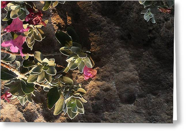 Greeting Card featuring the photograph Purple Sage And Desert Rock In Morning Light by Louis Nugent