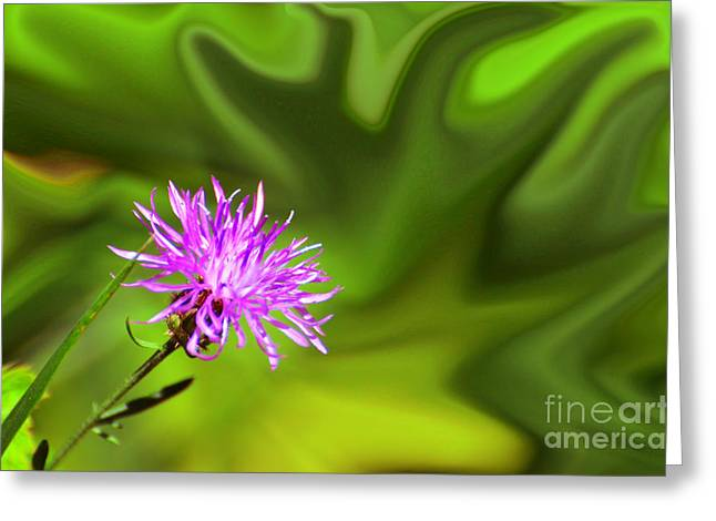 Purple Silk Greeting Card by Whispering Feather Gallery