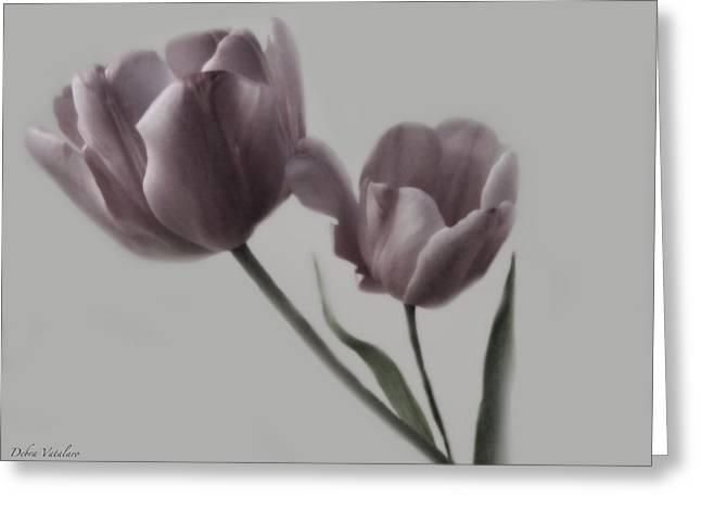 Putty Pale Tulips  Greeting Card by Debra     Vatalaro