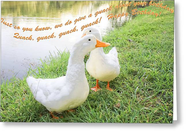 Quacker Birthday Greeting Card