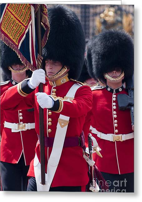 Queens Guards Greeting Card by Andrew  Michael