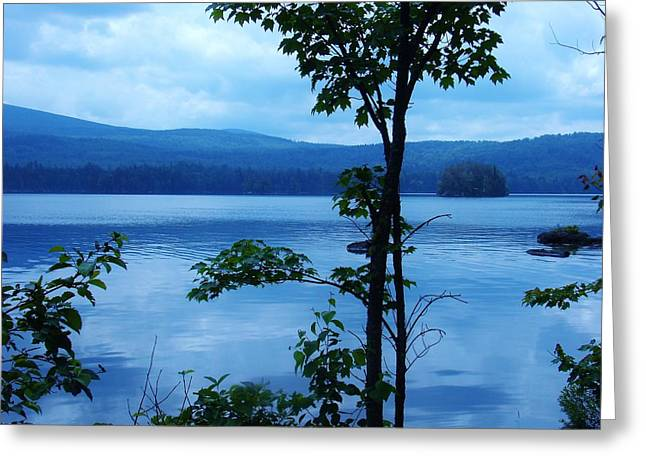 Quiet Lake Greeting Card by Sarah Buechler